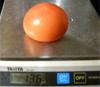 tomato130